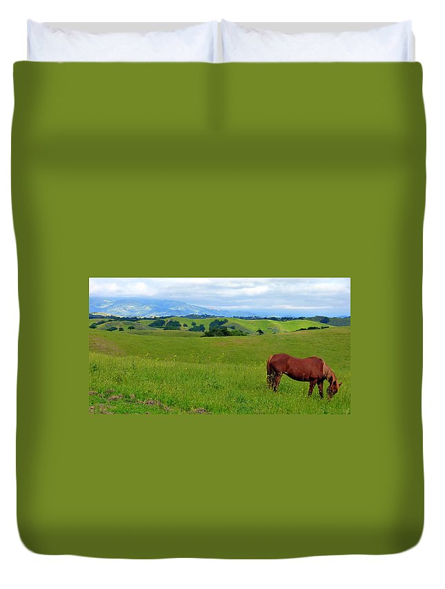 Contact Duvet Cover featuring the photograph Pretty Horse Grazing In Rolling Hills by Jeff Lowe