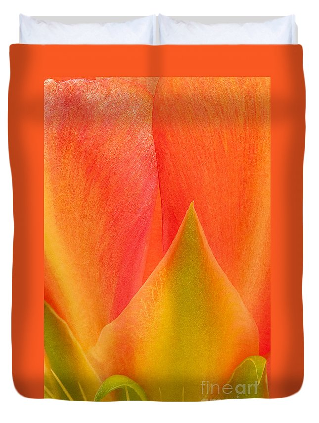 Texas Prickly Pear Duvet Cover featuring the photograph Prickly Pear Flower Petals Opuntia Lindheimeni In Texas by Dave Welling