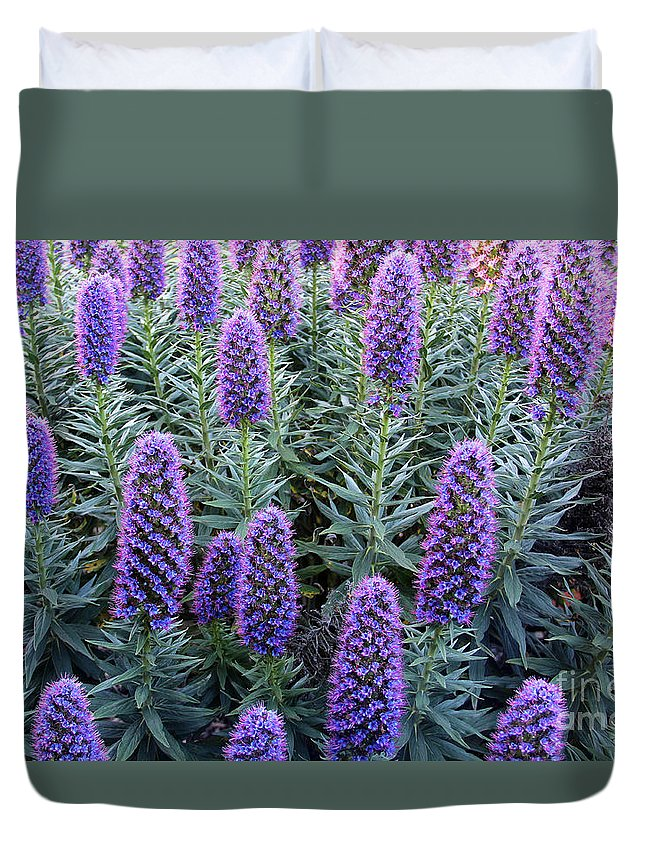 Pride Of Madeira Duvet Cover featuring the photograph Pride Of Madeira 7194 by Jack Schultz