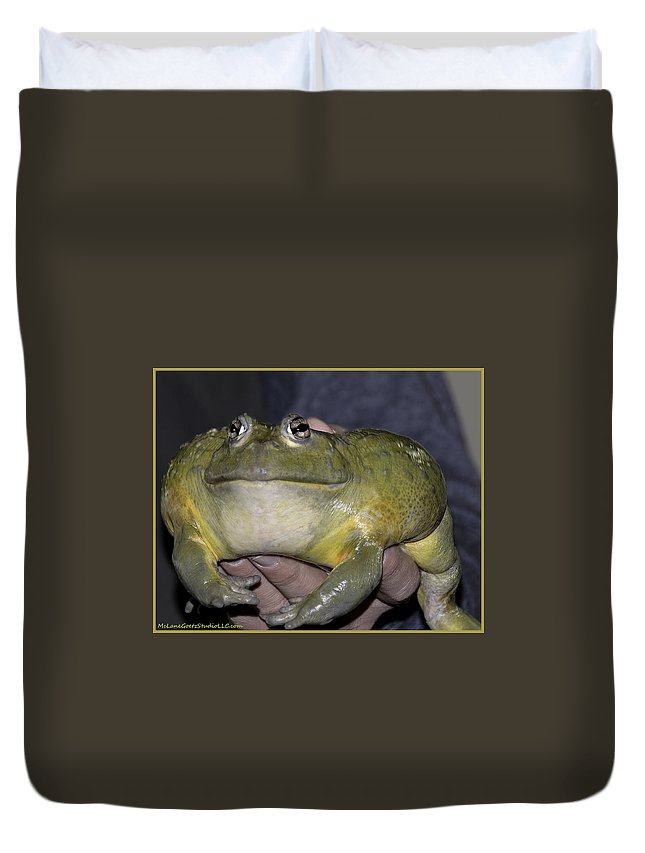 Usa Duvet Cover featuring the photograph Prince Frog Hands by LeeAnn McLaneGoetz McLaneGoetzStudioLLCcom