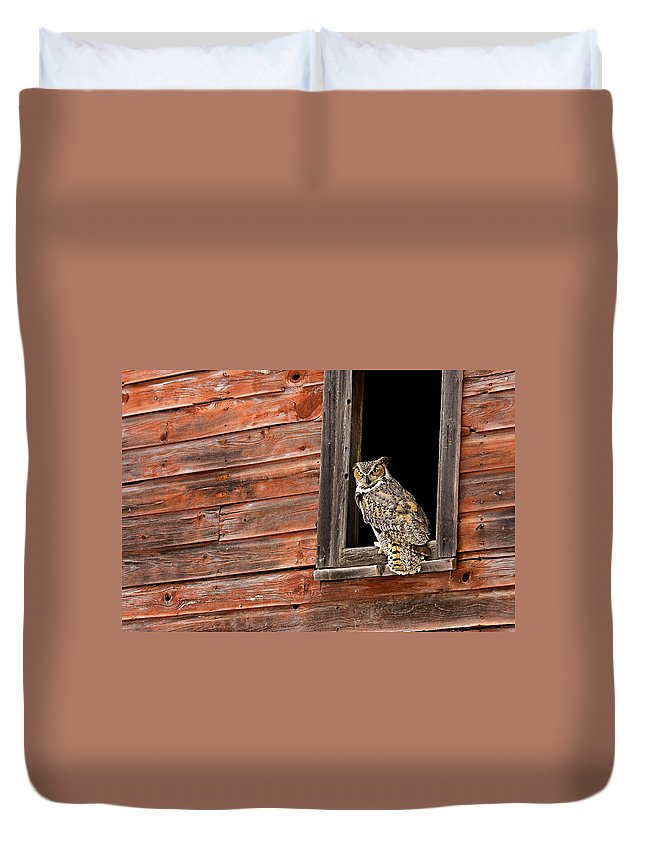 Great Horned Owl Duvet Cover featuring the photograph Professor by Jack Milchanowski