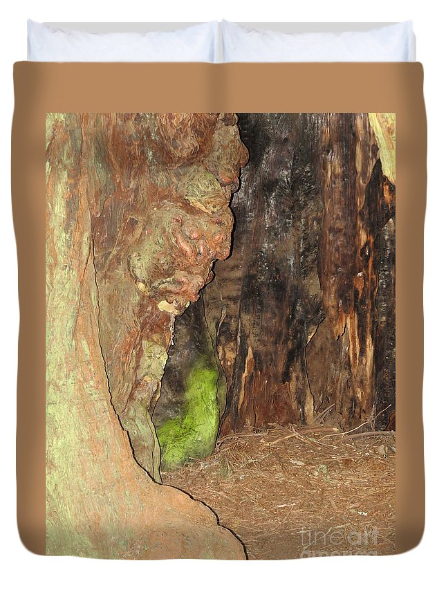 Face Duvet Cover featuring the photograph Profile Face In Tree by Mary Mikawoz