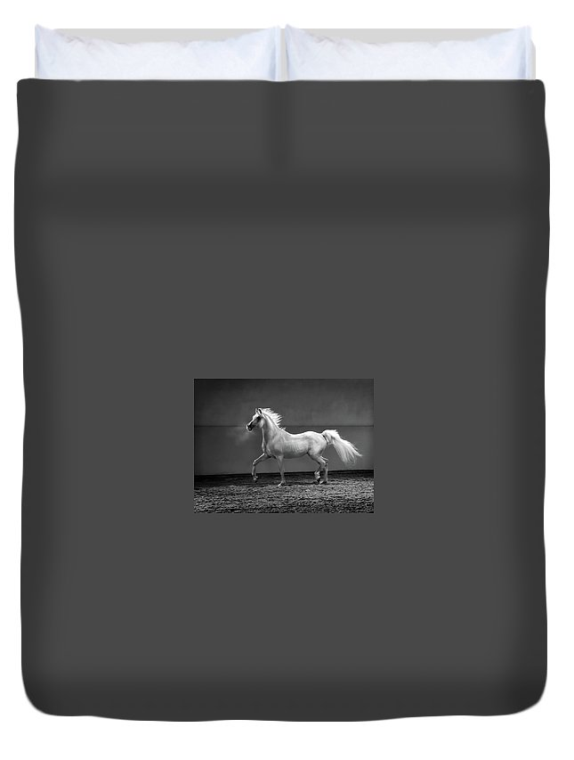 Horse Duvet Cover featuring the photograph Proud Arabian Horse - Stallion In by Kerrick
