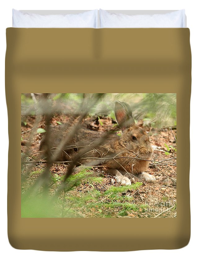 Hare Duvet Cover featuring the photograph Proud Hare by Lloyd Alexander