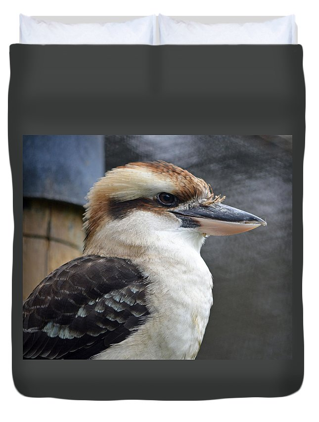 Kookaburra Duvet Cover featuring the photograph Proud Kookaburra by Richard Bryce and Family