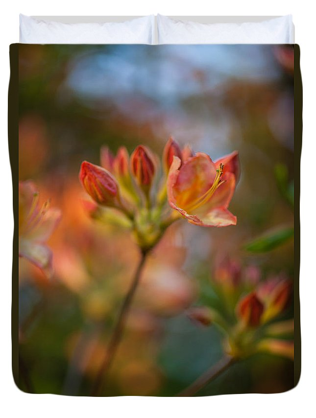 Rhododendron Duvet Cover featuring the photograph Proud Orange Blossoms by Mike Reid
