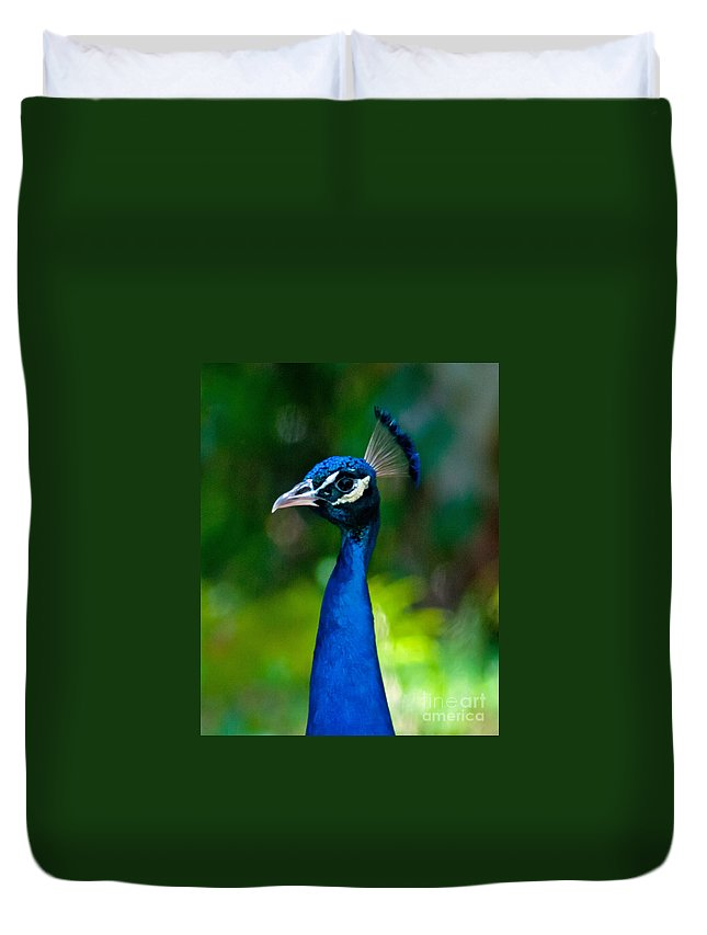 Peacock Duvet Cover featuring the photograph Proud Peacock by Stephen Whalen