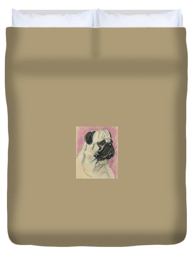 Pug Duvet Cover featuring the drawing Pugnacious by Cori Solomon
