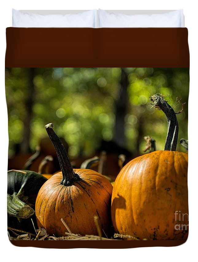 Pumpkin Patch Duvet Cover featuring the photograph Pumpkin Line Up by Peggy Hughes