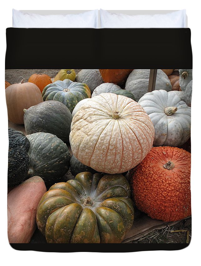 Vegetables Duvet Cover featuring the photograph Pumpkins And Gourds by Barbara McDevitt