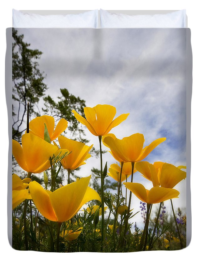 Poppies Duvet Cover featuring the photograph Purely Poppies by Saija Lehtonen