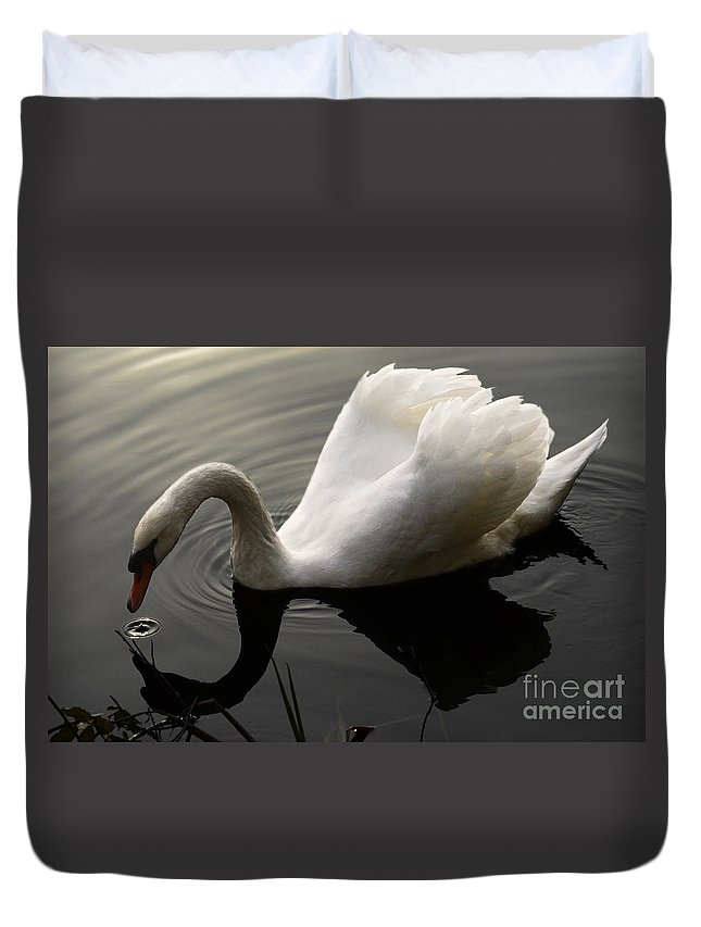 Swan Duvet Cover featuring the photograph Purity Of Spirit by Bob Christopher