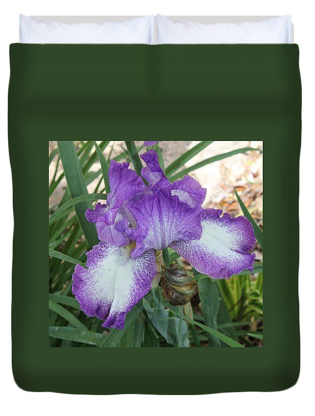 Iris Duvet Cover featuring the photograph Purple And White Iris by Mary Koval