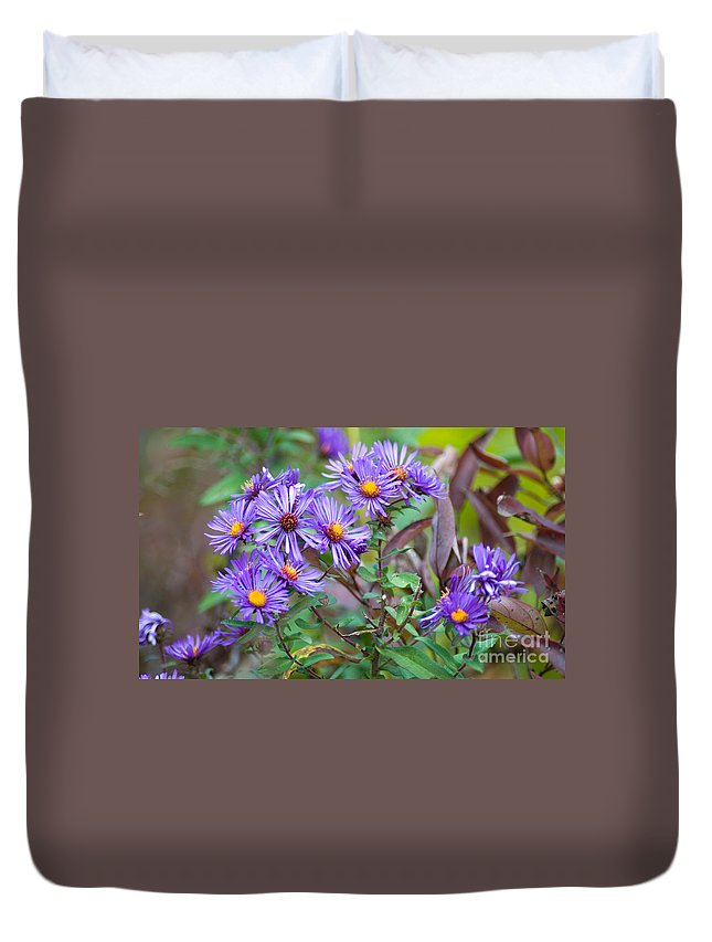 Purple Flowers Duvet Cover featuring the photograph Purple Asters by Optical Playground By MP Ray