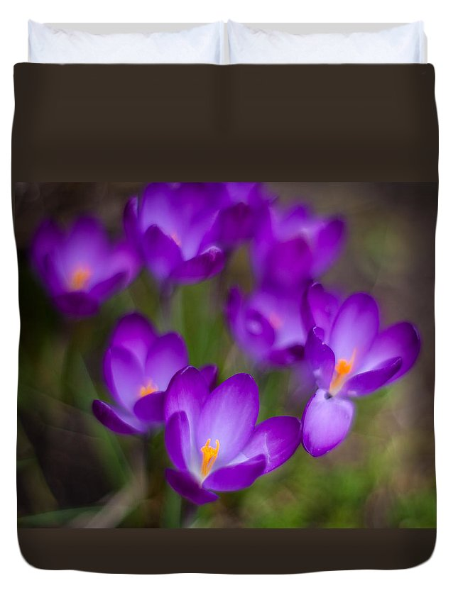 Crocus Duvet Cover featuring the photograph Purple Blanket by Mike Reid