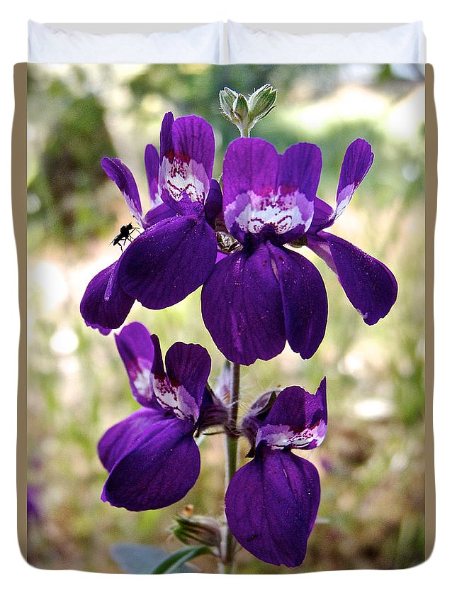 Purple Chinese Houses Duvet Cover featuring the photograph Purple Chinese Houses In Park Sierra-ca by Ruth Hager