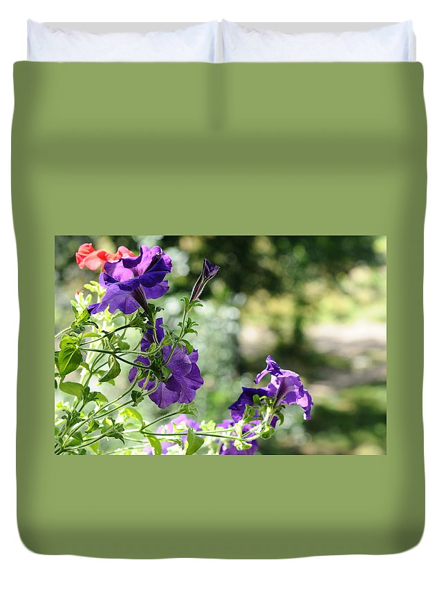 Petunia Duvet Cover featuring the photograph Purple Delight. Petunia Bloom by Jenny Rainbow