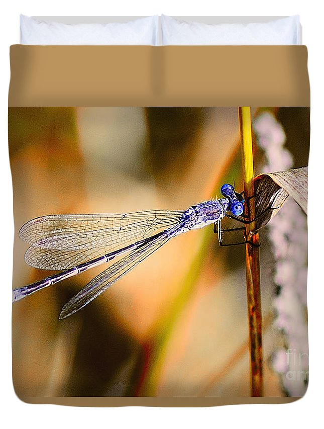 Dragonfly Duvet Cover featuring the photograph Purple Dragonfly by Viktor Birkus