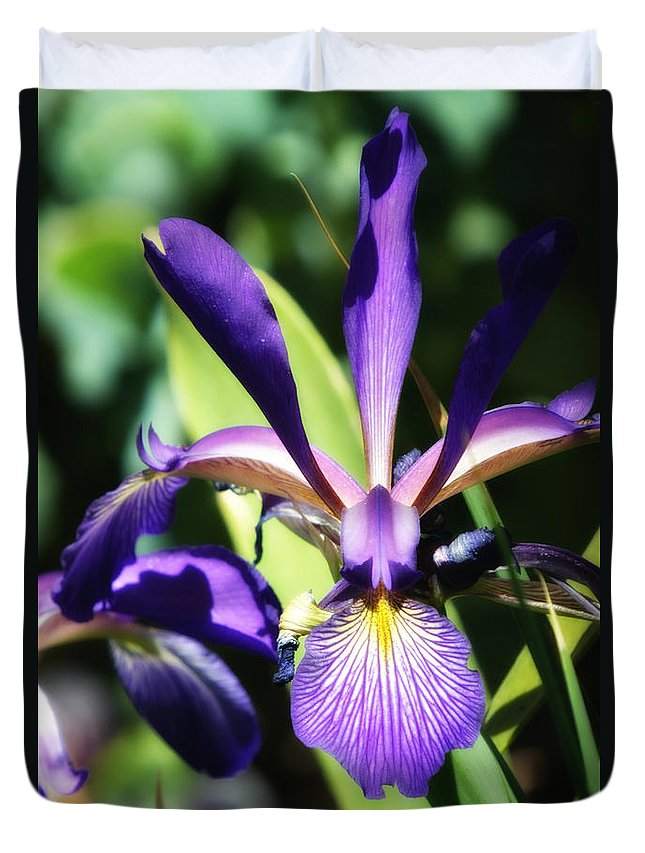 Botanicals Duvet Cover featuring the photograph Purple Iris by Linda Dunn