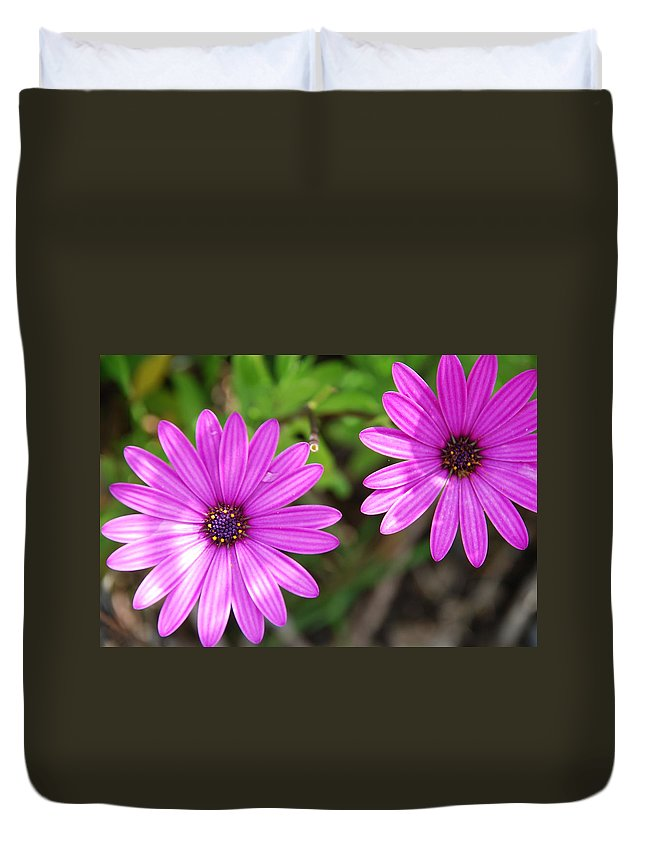 Purple Duvet Cover featuring the photograph Purple Passion by Charlie and Norma Brock