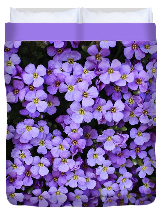 Rockcress Duvet Cover featuring the photograph Purple Rockcress by Carol Groenen