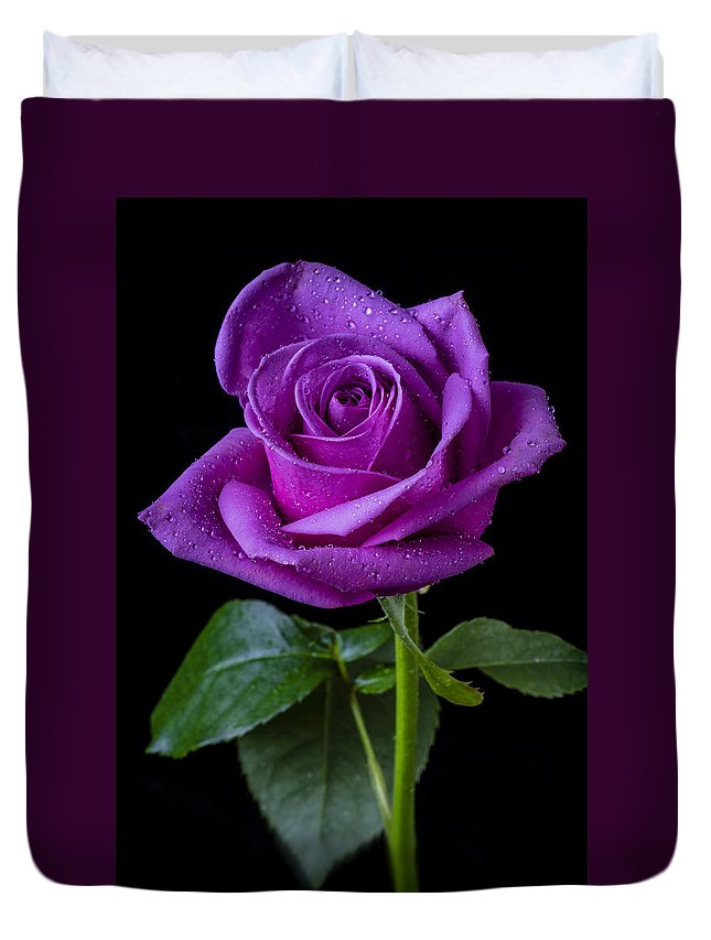 Purple Duvet Cover featuring the photograph Purple Rose by Garry Gay