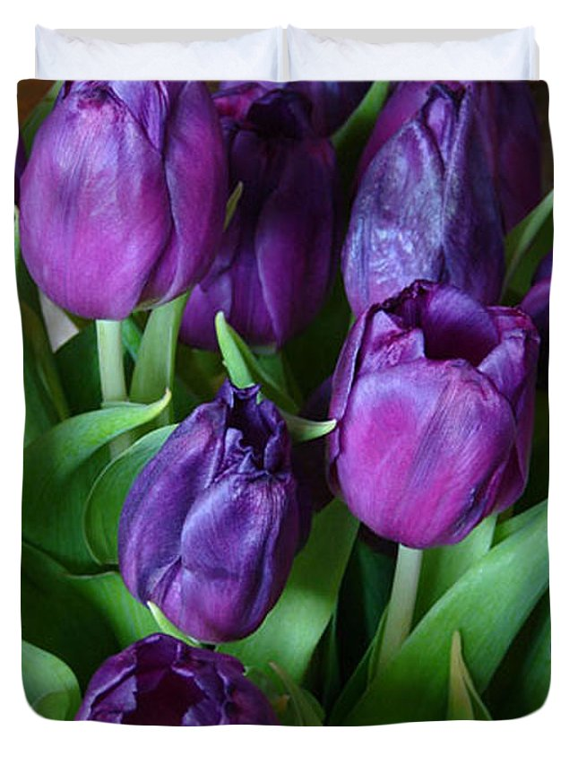 Purple Duvet Cover featuring the photograph Purple Tulips by Carol Lynch