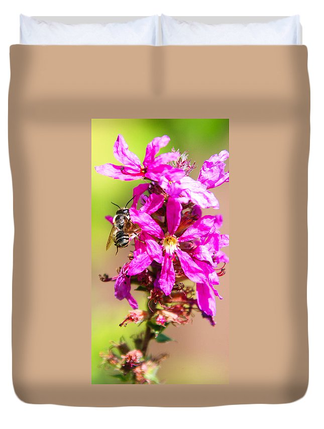 Purple Wild Flower Duvet Cover featuring the photograph Purple Wild Flower by Optical Playground By MP Ray