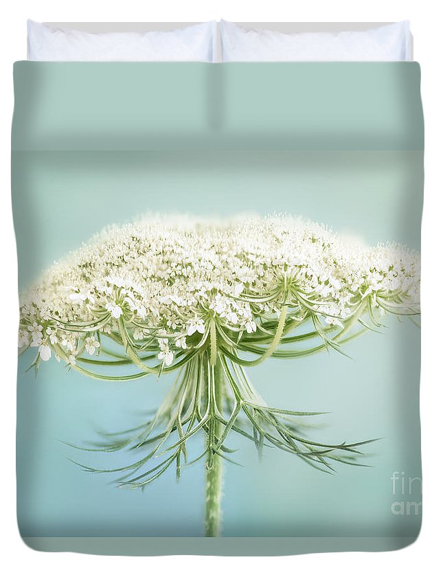 Queen Annes Lace Duvet Cover featuring the photograph Queen Anne's Lace Wildflower by Onelia PGPhotography