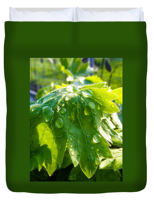 Rain Soaked Leaf Duvet Cover featuring the photograph Rain Soaked Leaf by Cynthia Woods