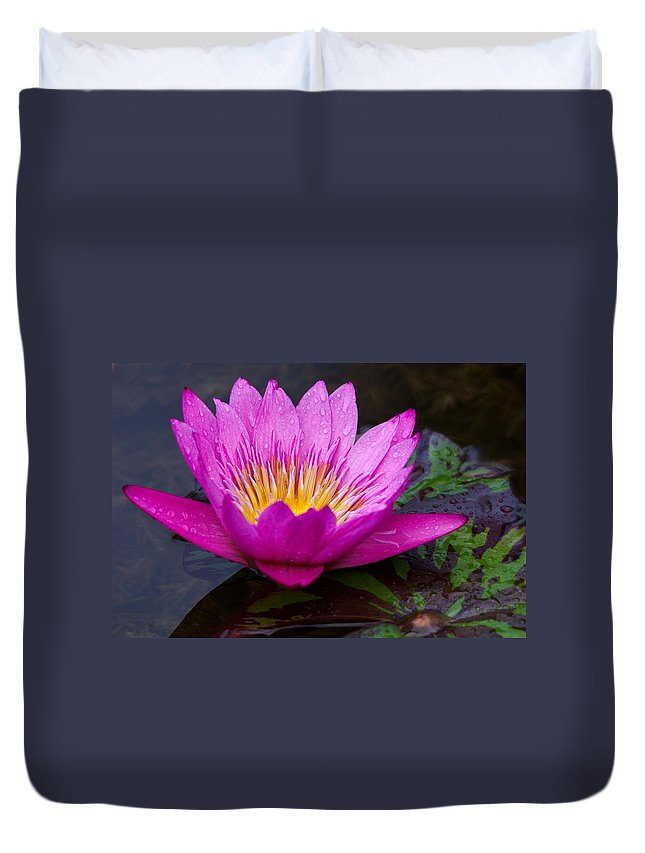 Roy Williams Duvet Cover featuring the photograph Rainy Day Water Lily Reflections II by Roy Williams