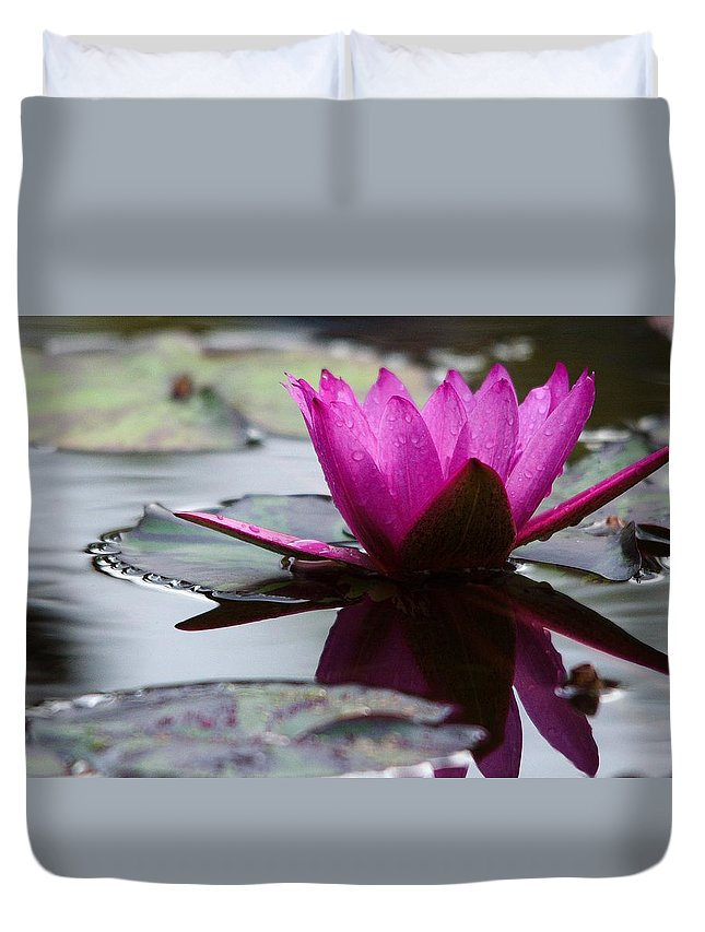 Roy Williams Duvet Cover featuring the photograph Rainy Day Water Lily Reflections 6 by Roy Williams