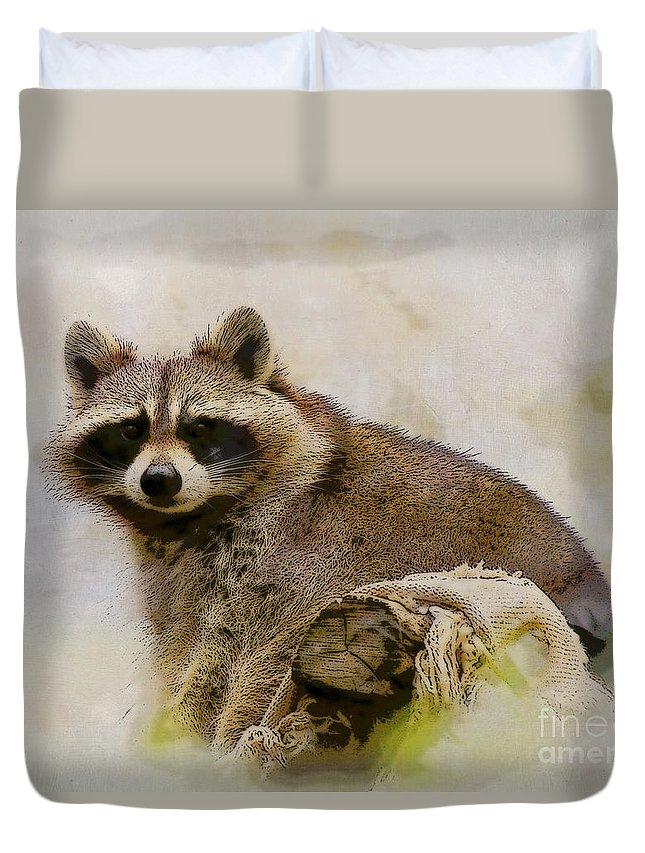 Raccoon Duvet Cover featuring the photograph Rakish Raccoon by Kerri Farley