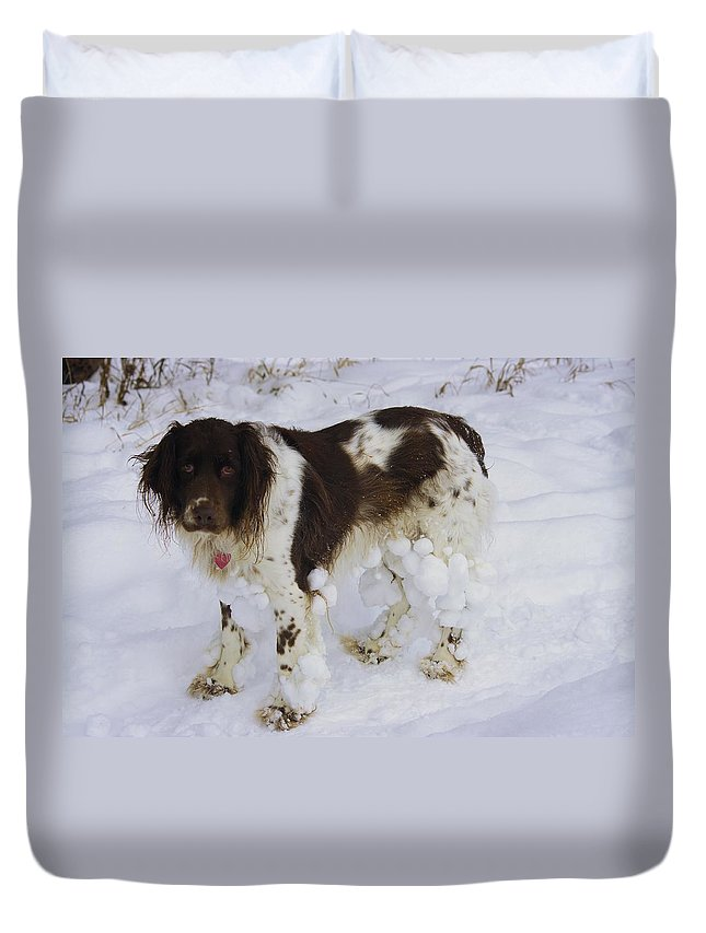 Razzle Duvet Cover featuring the photograph Razzle With Snowballs by John Greaves