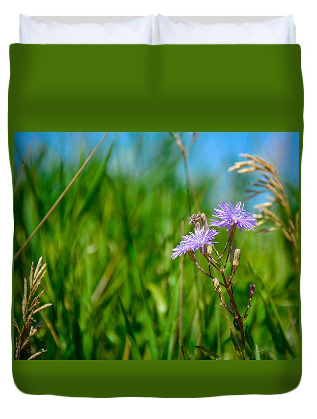 South Dakota Duvet Cover featuring the photograph Reaching For The Sun by M Dale