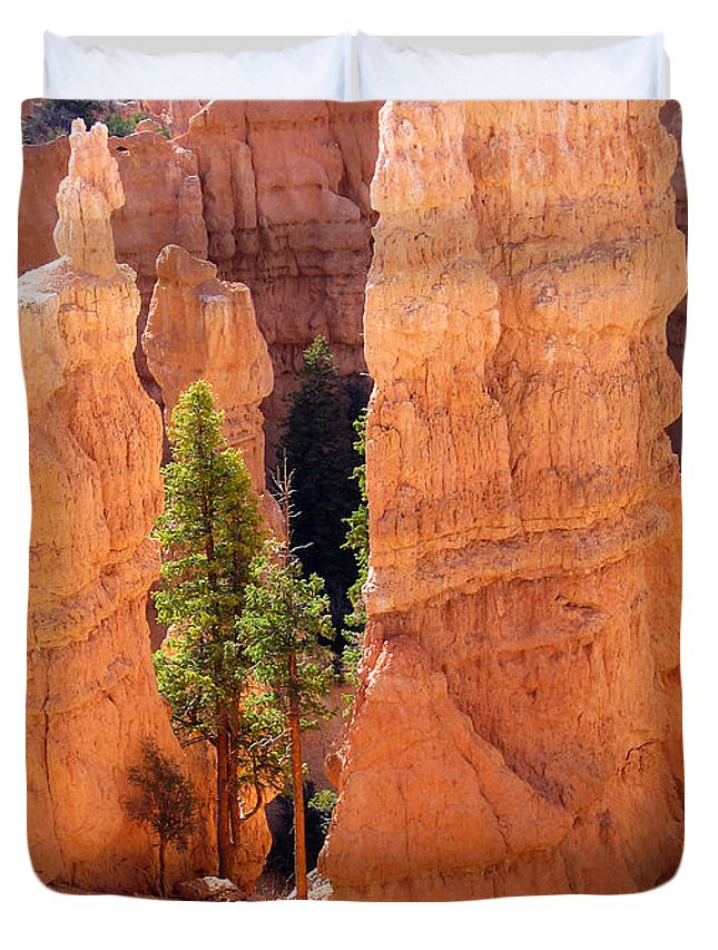 Bryce Canyon Duvet Cover featuring the photograph Reaching Towards The Sun by Meghan at FireBonnet Art