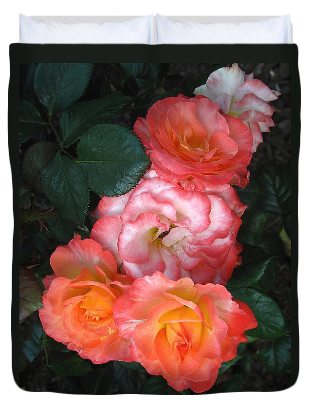 Rose Duvet Cover featuring the photograph Ready For The Prom by Barbara McDevitt