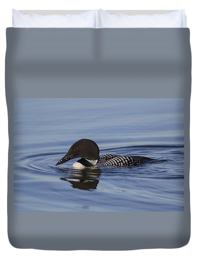 Doug Lloyd Duvet Cover featuring the photograph Ready To Dive by Doug Lloyd