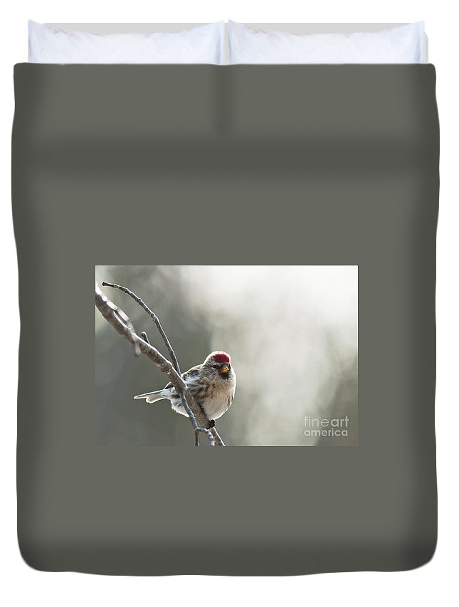 Landscapes Duvet Cover featuring the photograph Ready To Go by Cheryl Baxter