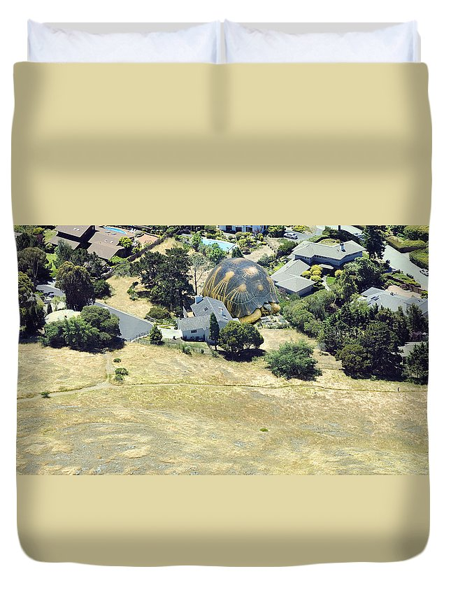 Tortoise Duvet Cover featuring the photograph Real Tortoise Estate by Daniel Furon