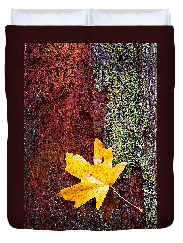 Leaves Duvet Cover featuring the photograph Reclamation by Mike Dawson