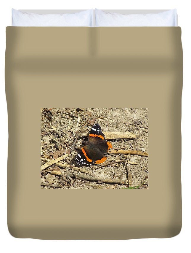 Butteriflies Duvet Cover featuring the photograph Red Admiral by Eric Noa