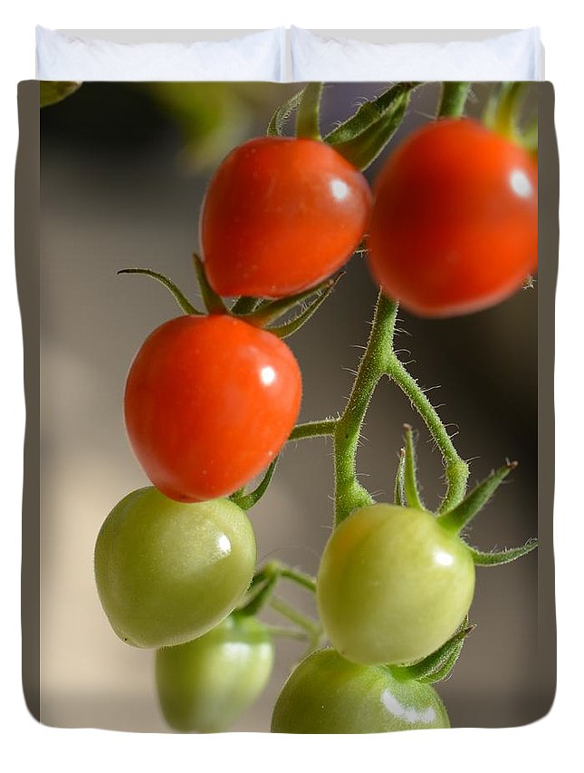Tomato Duvet Cover featuring the photograph Red And Green Tomatoes by Lena Photo Art