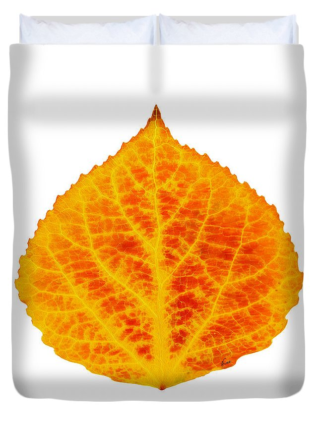 Aspen Leaf Duvet Cover featuring the digital art Red And Yellow Aspen Leaf 6 by Agustin Goba