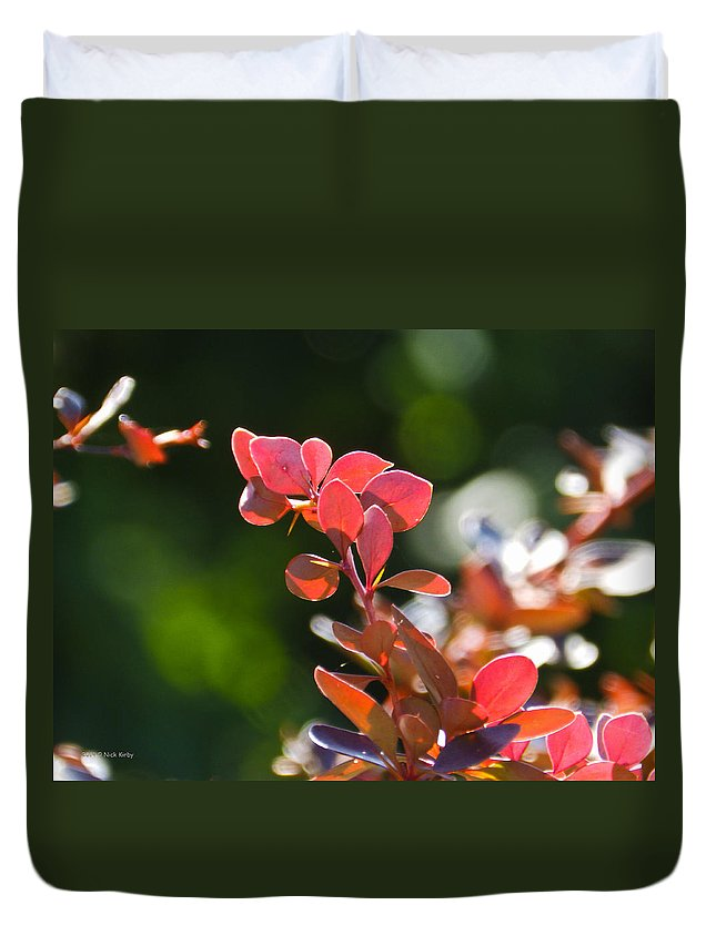 Barberry Duvet Cover featuring the photograph Red Barberry by Nick Kirby