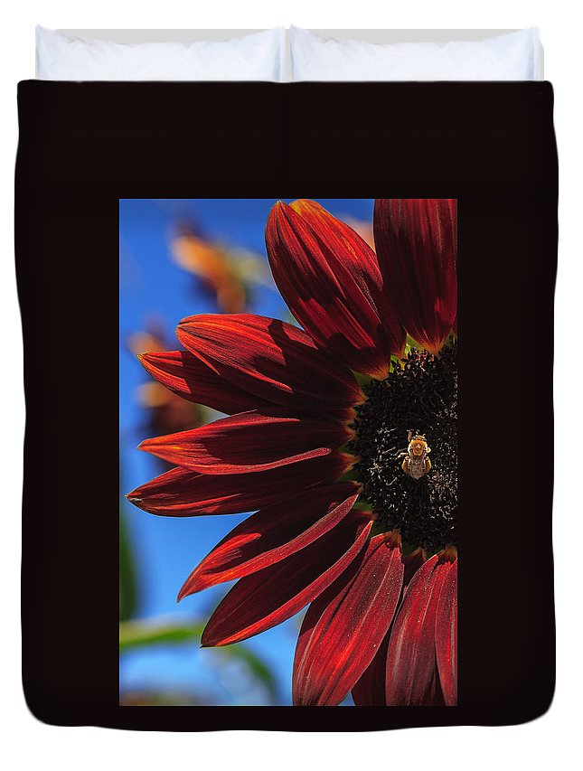 Sunflower Duvet Cover featuring the photograph Red Be There by Scott Campbell