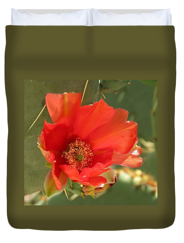 Flower Duvet Cover featuring the photograph Red Bloom by Laurel Powell