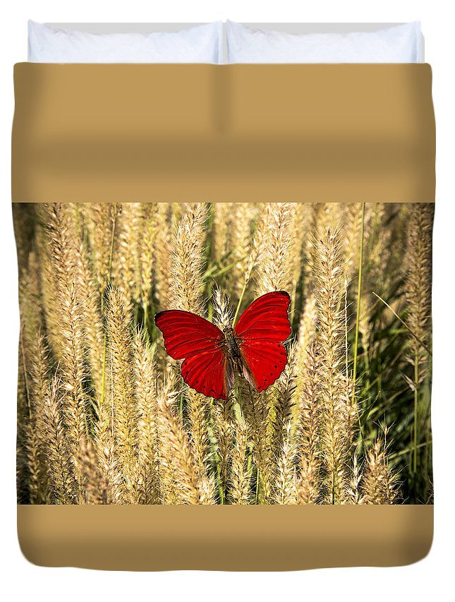 Red Butterfly Duvet Cover featuring the photograph Red Butterfly In The Tall Weeds by Garry Gay