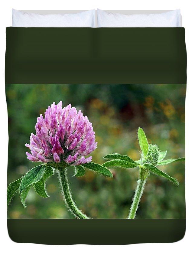 Clover Duvet Cover featuring the photograph Red Clover by Nikolyn McDonald