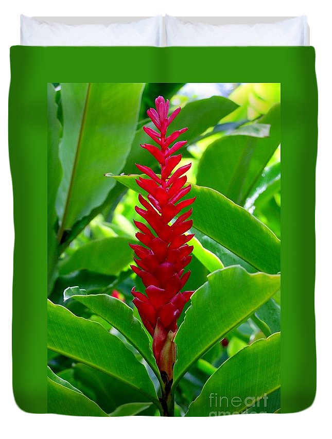Flowers Duvet Cover featuring the photograph Red Cone Ginger by Mary Deal